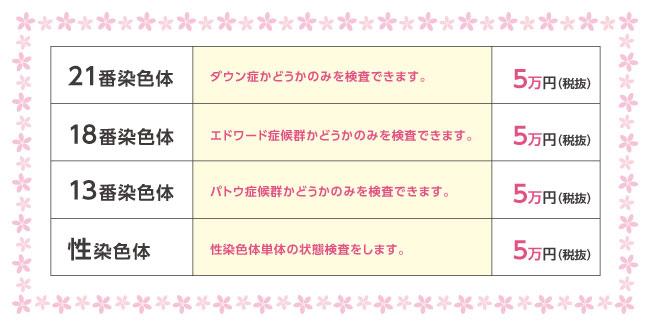ヒロクリニックの5万円プラン